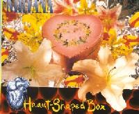 Letras de canciones de Kurt cobain moist vagina